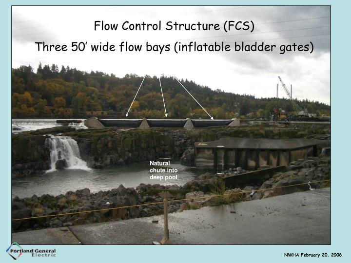 Flow Control Structure (FCS)