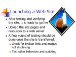 launching a web site
