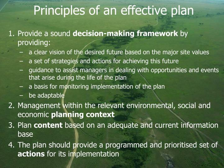 Principles of an effective plan