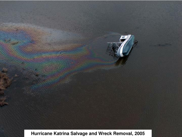 Hurricane Katrina Salvage and Wreck Removal, 2005