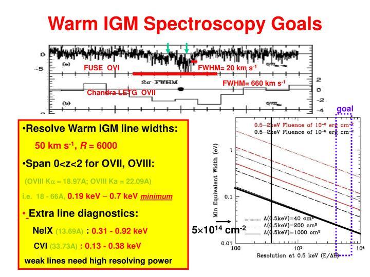 Warm IGM Spectroscopy Goals