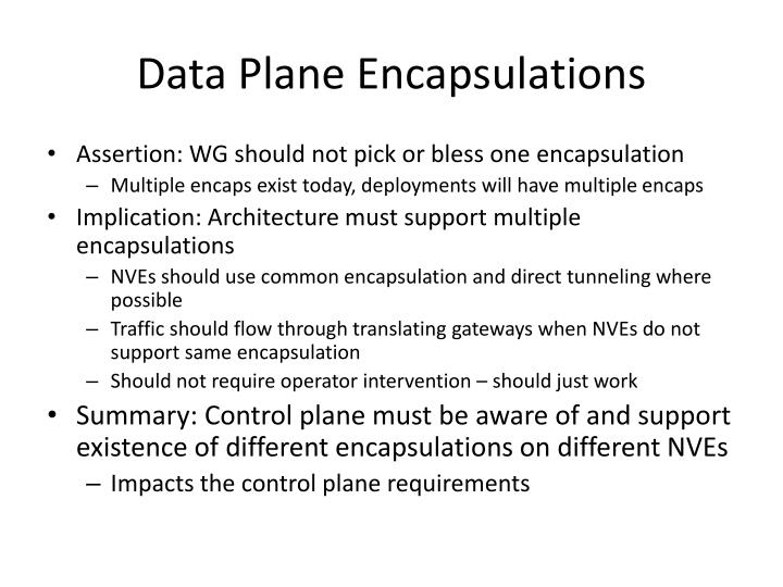 Data Plane Encapsulations