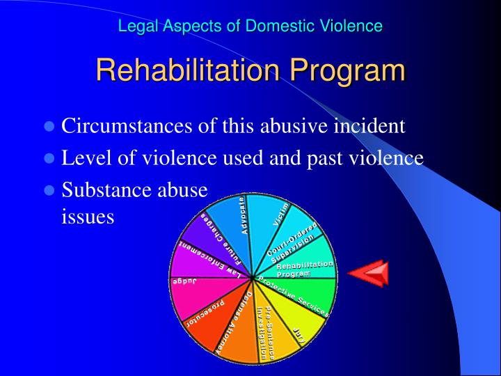 Rehabilitation Program