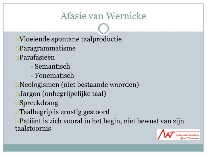 Afasie van Wernicke