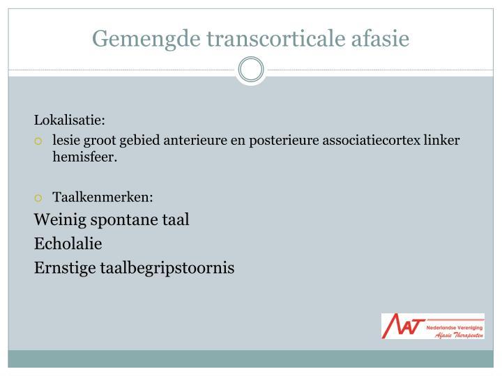Gemengde transcorticale afasie