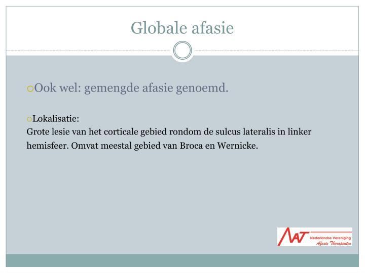 Globale afasie