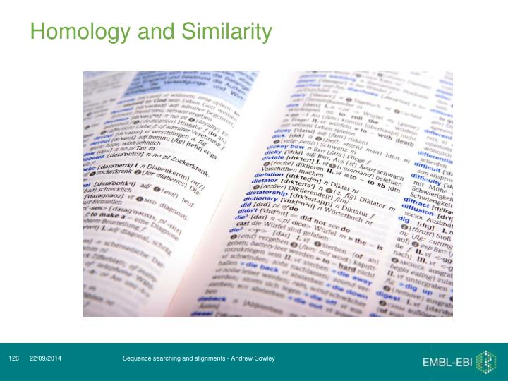 Homology and Similarity