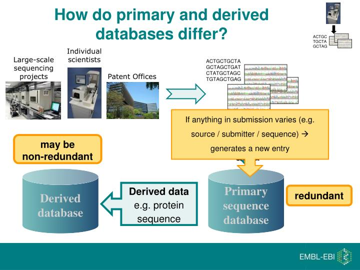 How do primary and derived databases differ?