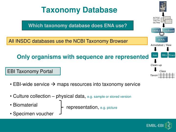 Taxonomy Database