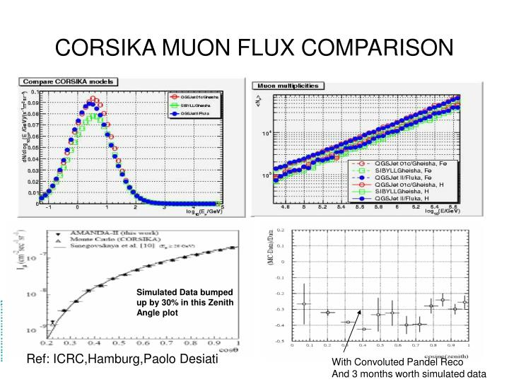 CORSIKA MUON FLUX COMPARISON