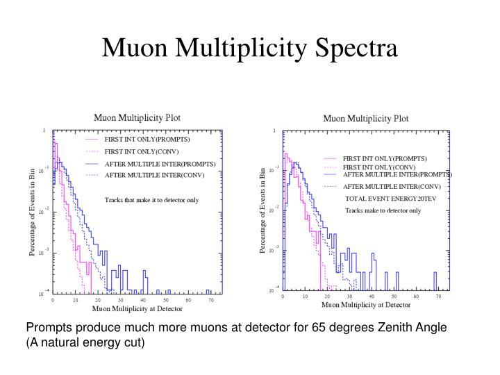 Muon Multiplicity Spectra