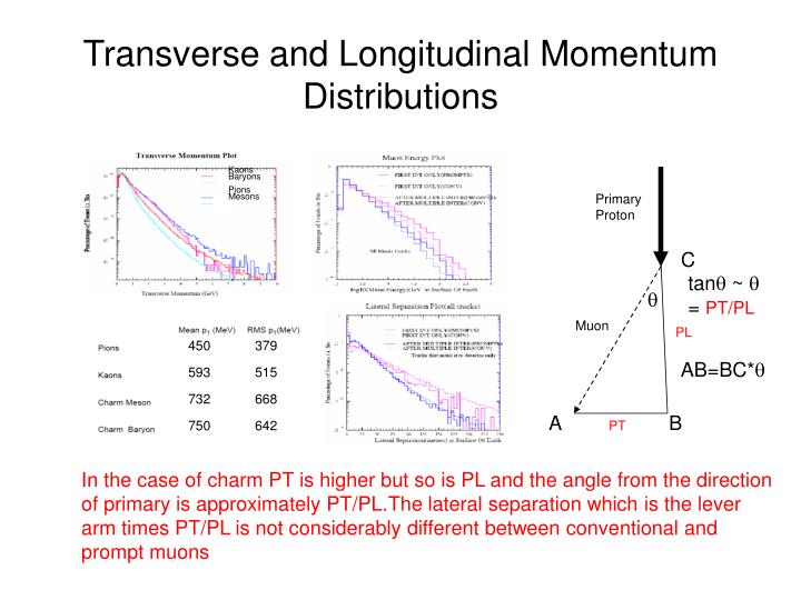 Transverse and Longitudinal Momentum Distributions