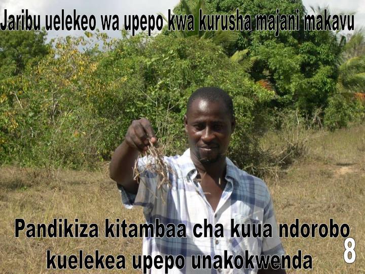 Jaribu uelekeo wa upepo kwa kurusha majani makavu