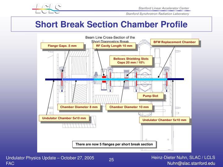 Short Break Section Chamber Profile