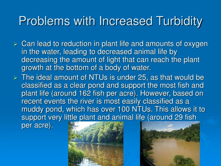 Problems with Increased Turbidity