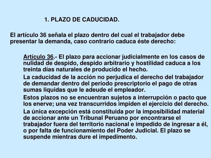 1. PLAZO DE CADUCIDAD.