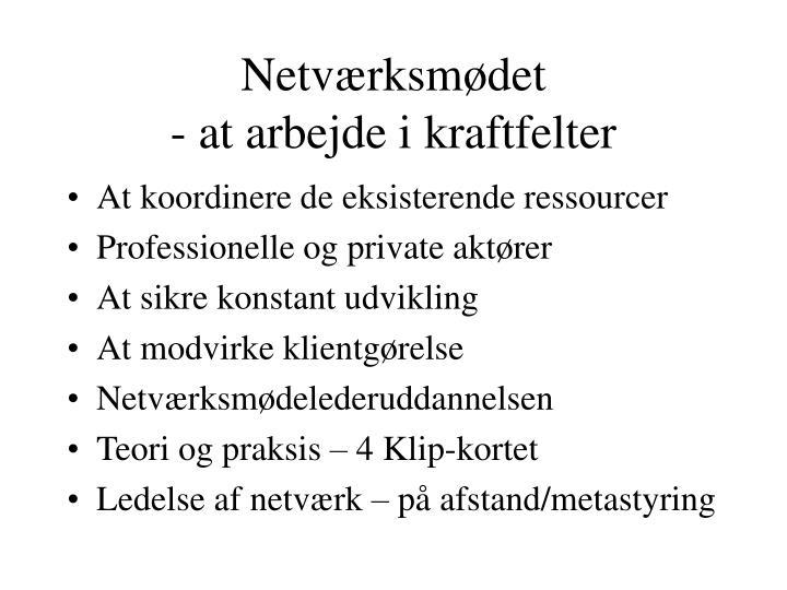 Netværksmødet