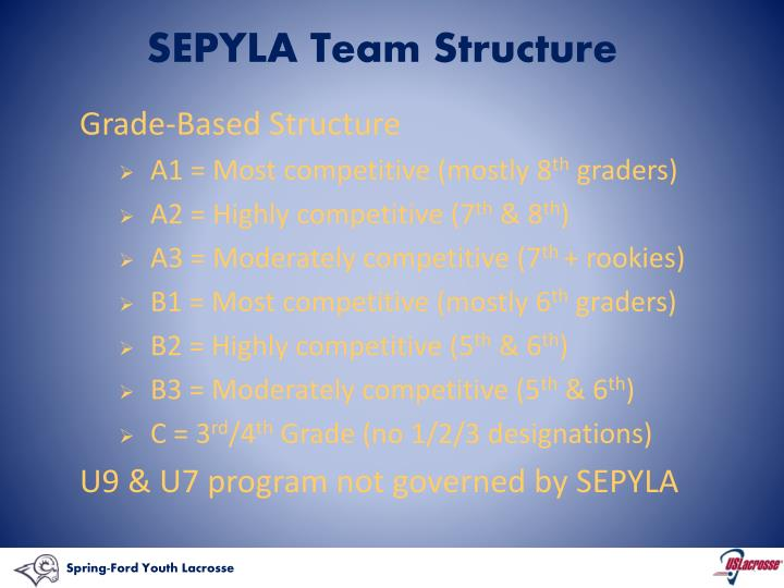 SEPYLA Team Structure