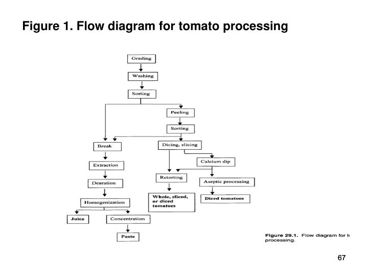 Figure 1. Flow diagram for tomato processing