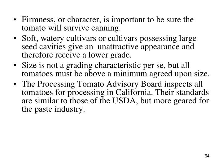 Firmness, or character, is important to be sure the tomato will survive canning.