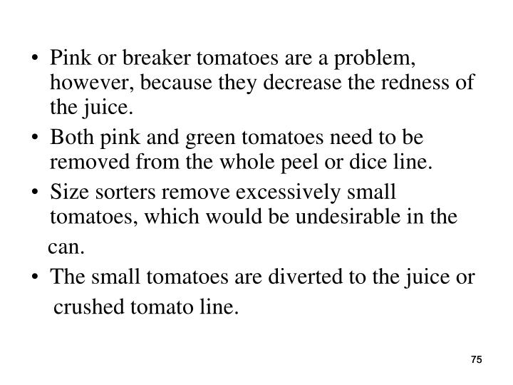 Pink or breaker tomatoes are a problem, however, because they decrease the redness of the juice.
