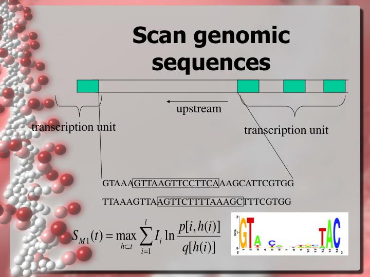 Scan genomic sequences
