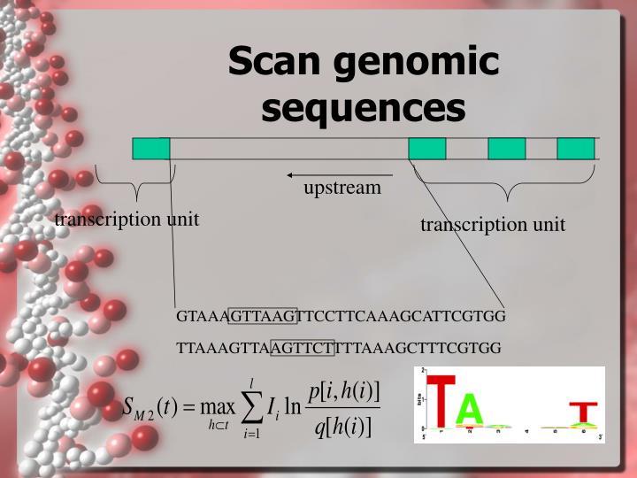 Scan genomic sequences