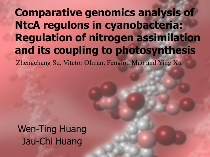 Comparative genomics analysis of NtcA regulons in cyanobacteria: Regulation of nitrogen assimilation and its coupling to photosynthesis