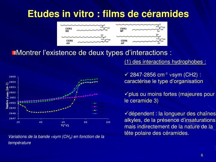 Etudes in vitro : films de céramides