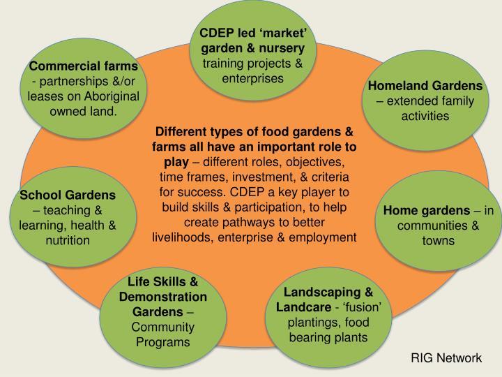 CDEP led 'market' garden & nursery