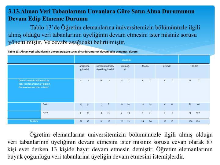 Tablo 13: Alınan veri tabanlarının unvanlara göre satın alma durumunun devam edip etmemesi durum