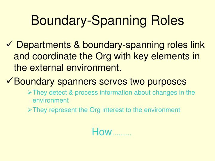 Boundary-Spanning Roles