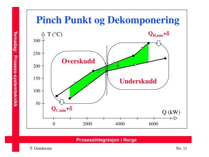 Pinch Punkt og Dekomponering