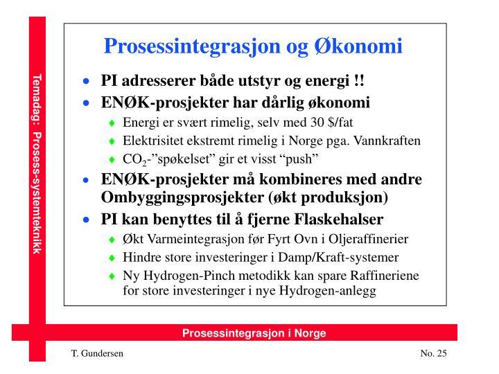 Prosessintegrasjon og Økonomi