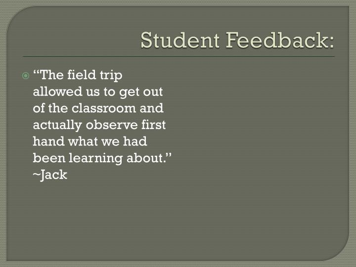 Student Feedback: