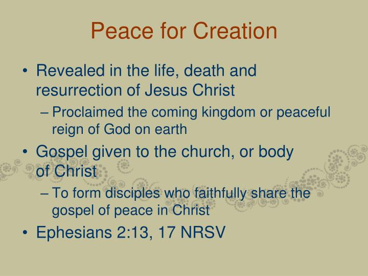 Peace for Creation
