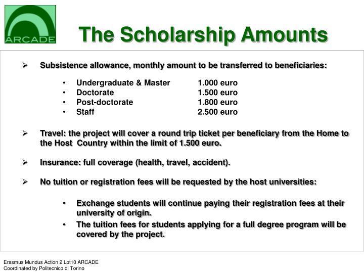The Scholarship Amounts
