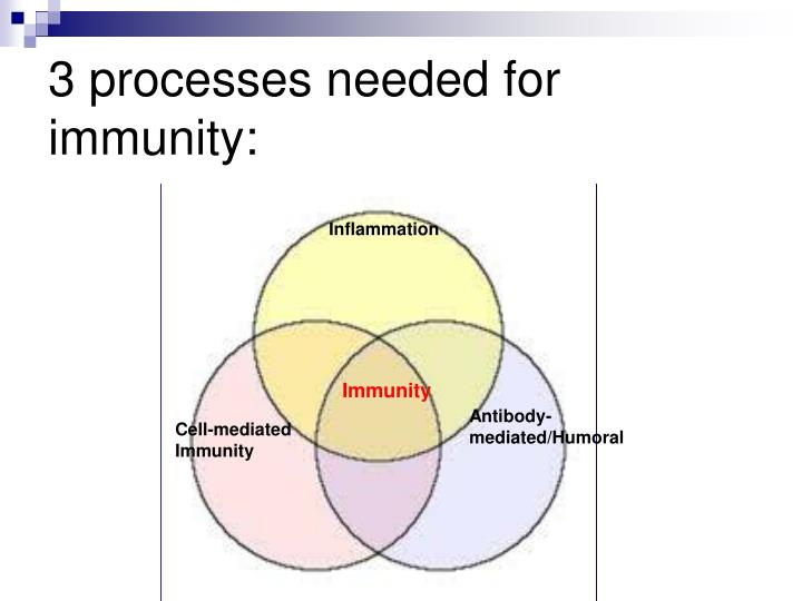 3 processes needed for immunity: