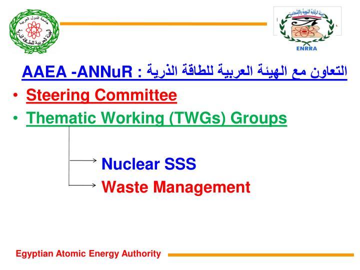 التعاون مع الهيئة العربية للطاقة الذرية :