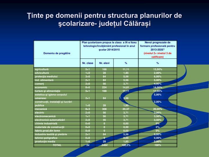 Ţinte pe domenii pentru structura planurilor de şcolarizare