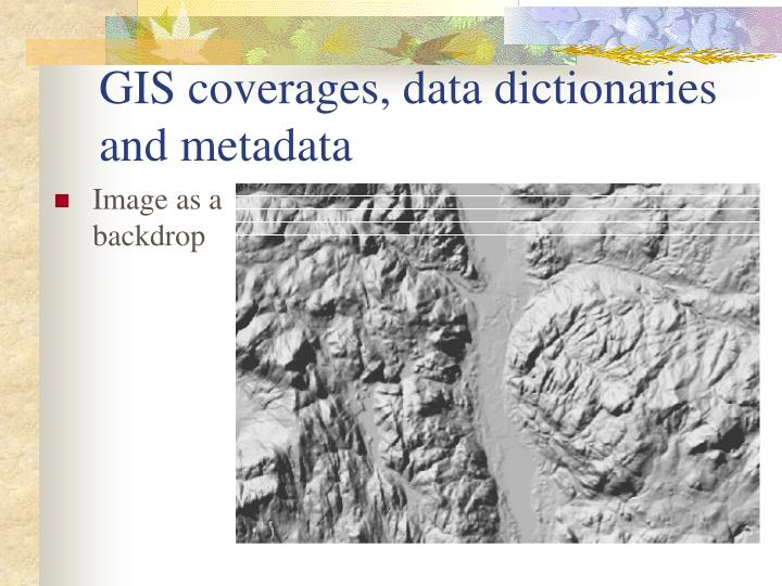 GIS coverages, data dictionaries and metadata