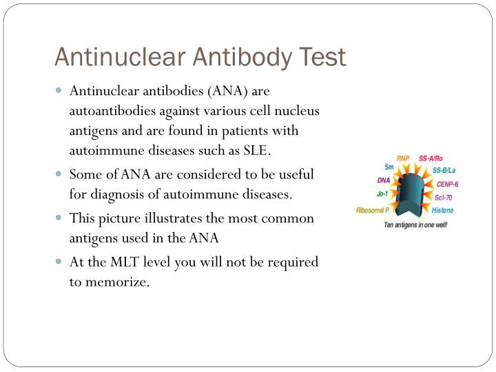 Antinuclear Antibody Test