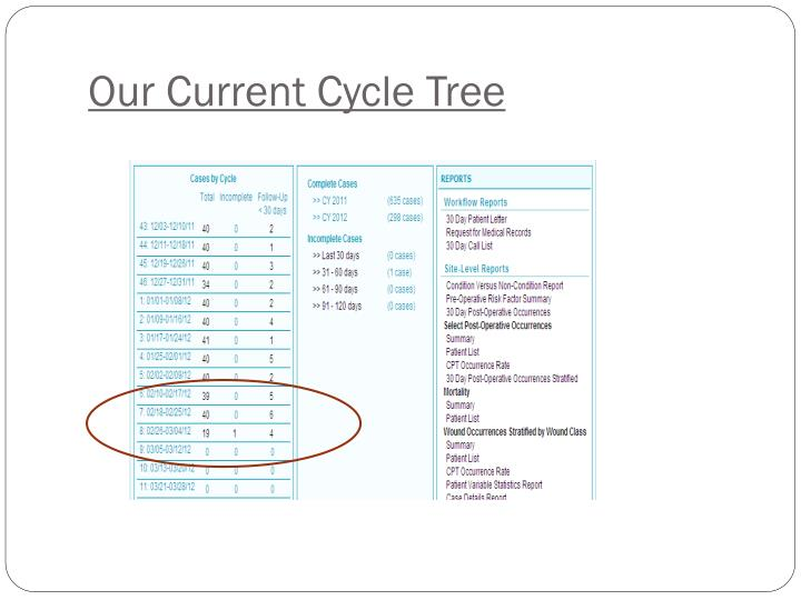 Our Current Cycle Tree