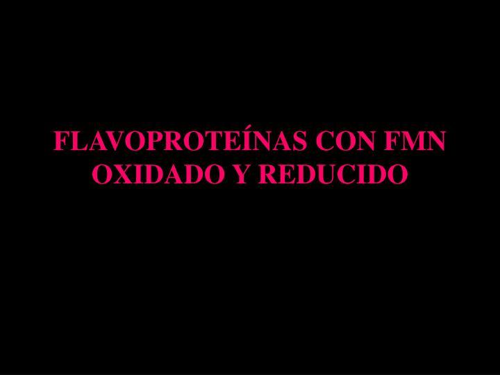 FLAVOPROTEÍNAS CON FMN OXIDADO Y REDUCIDO