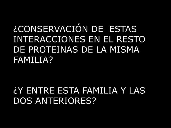 ¿CONSERVACIÓN DE  ESTAS INTERACCIONES EN EL RESTO DE PROTEINAS DE LA MISMA FAMILIA?