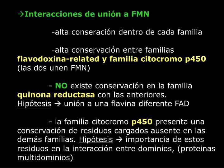 Interacciones de unión a FMN
