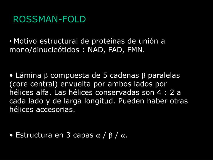 ROSSMAN-FOLD