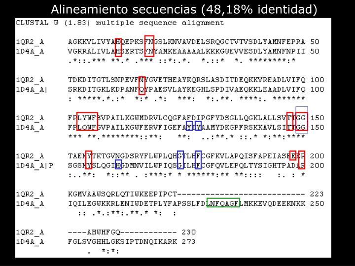 Alineamiento secuencias (48,18% identidad)