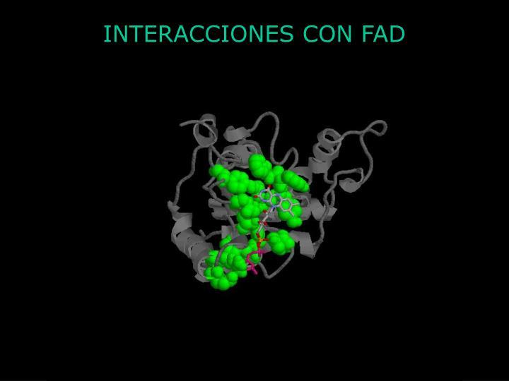 INTERACCIONES CON FAD