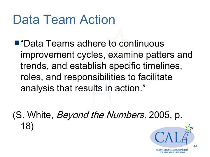 Data Team Action